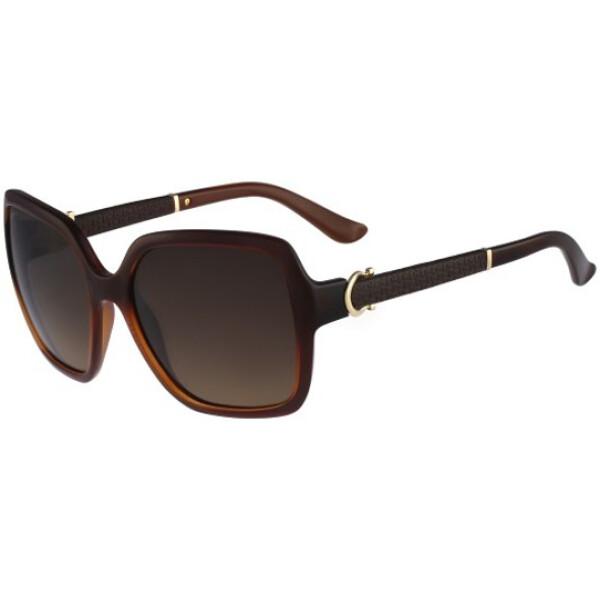 Imagem dos óculos FE765 210