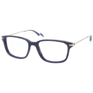 Imagem dos óculos PH2105 5425 5117