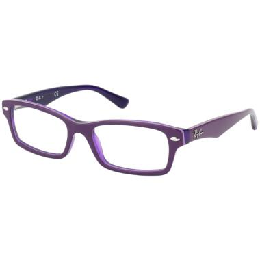 Imagem dos óculos RB1530 3589 4616