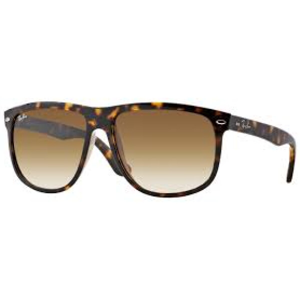Imagem dos óculos RB4147 710/51 60