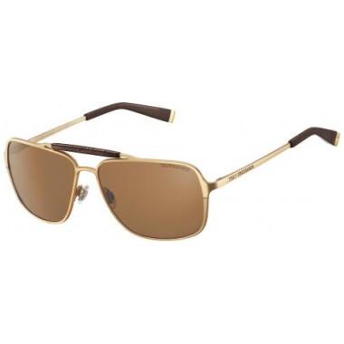 Imagem dos óculos TE12905 GD
