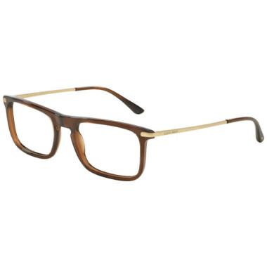 Imagem dos óculos AR7044 5307 5520