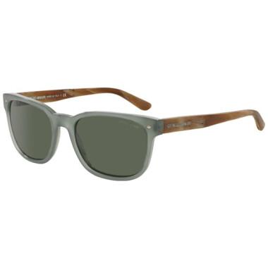 Imagem dos óculos AR8049 5361/31