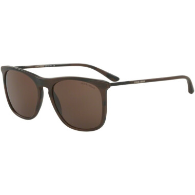 Imagem dos óculos AR8076 5495/73