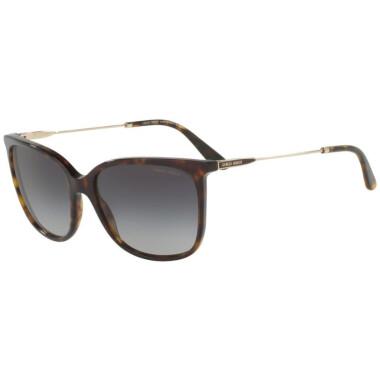 Imagem dos óculos AR8080 5026/8G