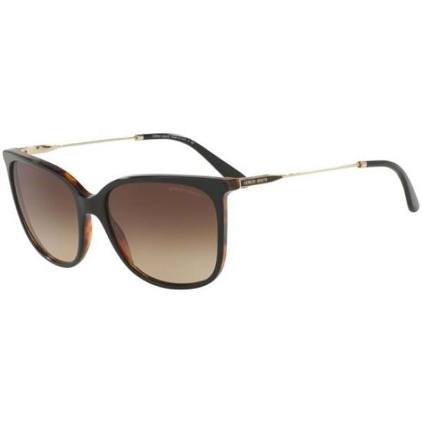 Imagem dos óculos AR8080 5049/13