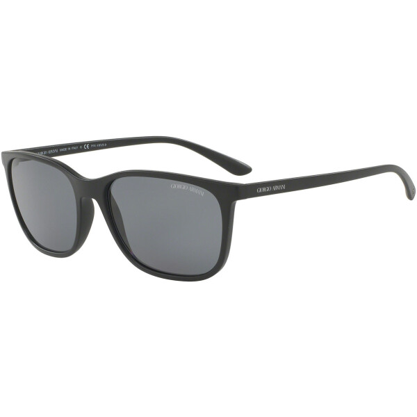 Imagem dos óculos AR8084 504281