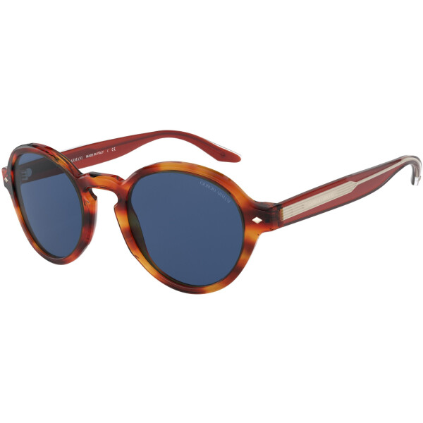 Imagem dos óculos AR8130 5809/80