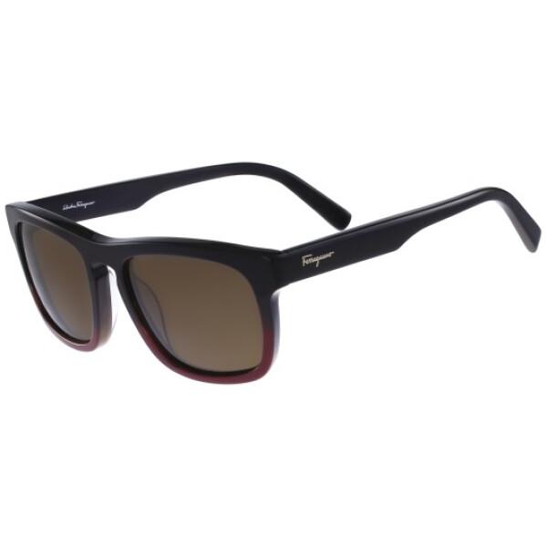 Imagem dos óculos FE789 012